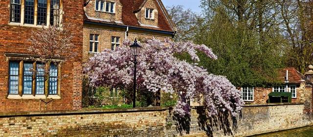 Les plus beaux lieux à visiter lors d'un voyage à Cambridge
